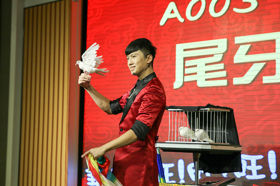 帥氣的白鴿魔術