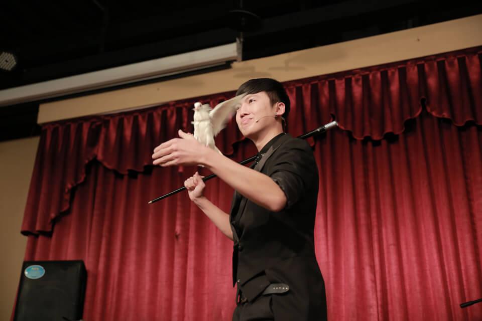 魔術師查尼平常是很愛護白鴿的,所以表演的時候白鴿都會乖乖聽話呢~